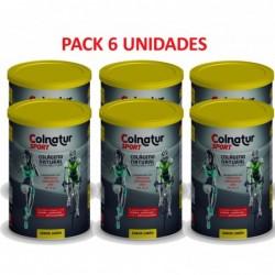 Pack 6 Colnatur Sport sabor...